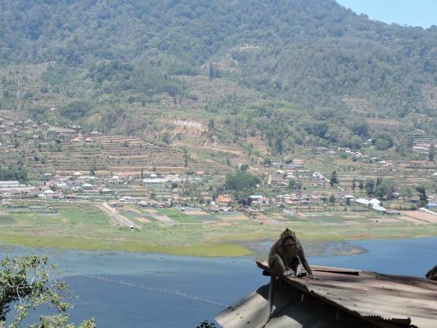 Bali Nikon 032