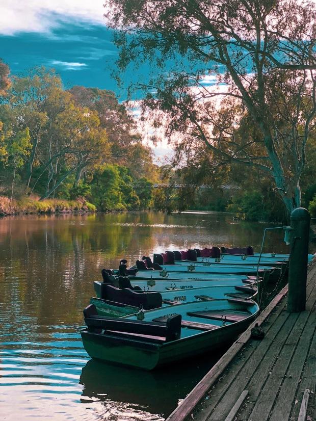 Melbourne - parklands