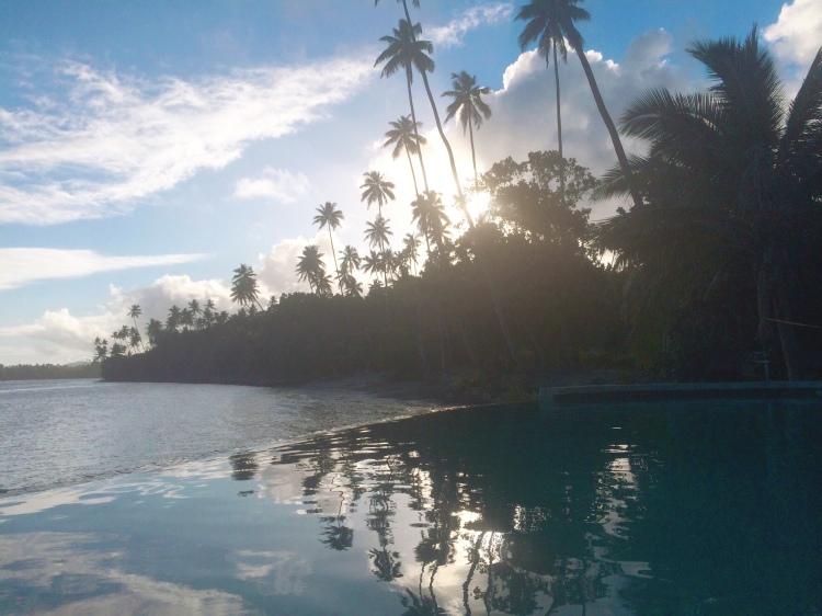 Fiji - pool and palms